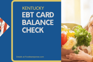 """Check Your Kentucky EBT Card Balance online"""