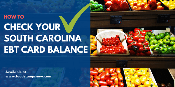 How to Check South Carolina EBT Card Balance