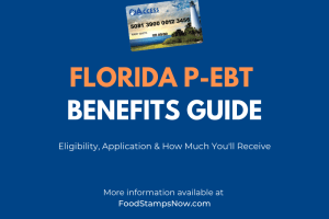 Florida P-EBT Benefits Guide