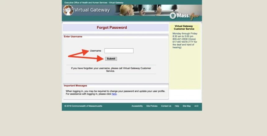 Reset Virtual Gateway Massachusetts Password