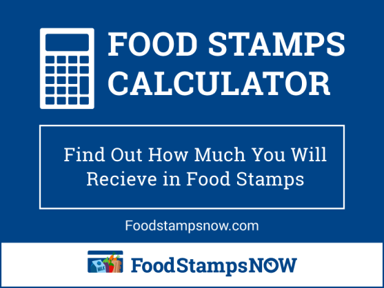 """Food Stamps Calculator - How Much Will I Get?"""
