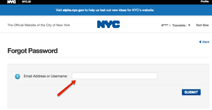 """NYC ACCESS HRA Forgot Password"""