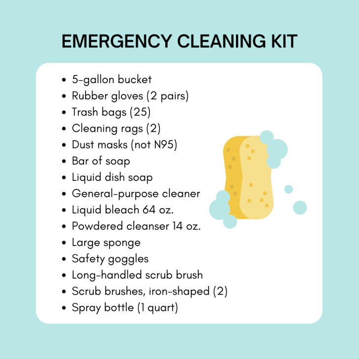 Emergency Cleaning Kit
