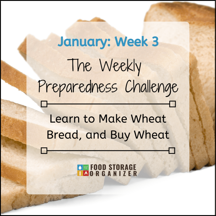 Learn to Make Wheat Bread • January Prep Challenge #3