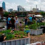 28 Inspiring Urban Agriculture Projects