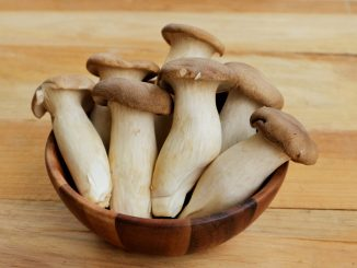 king oyster mushroom health benefts