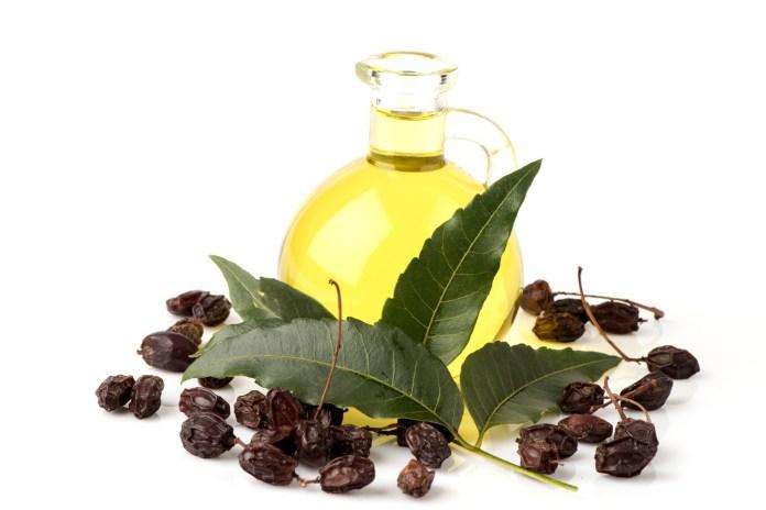 neem oil health benefits