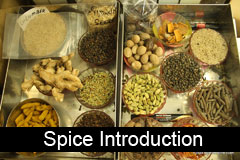 Introduction to Spices