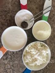 Ingredients for Chenna Burfi