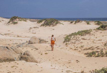 Wat te doen op Aruba? De leukste tips en bezienswaardigheden