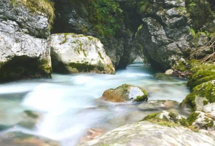 De mooiste natuur in Slovenië: bossen, watervallen, bergen en meren