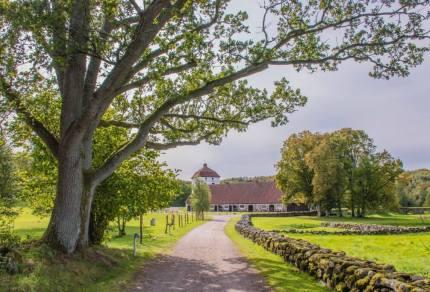 Hiken in Zuid Zweden: Skåneleden en de mooiste natuurgebieden