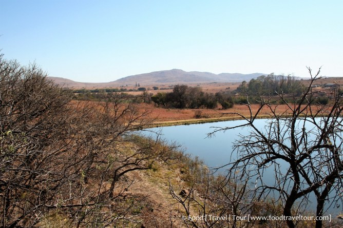 Travel Africa (SA) - Dullstroom 02 Water (1)