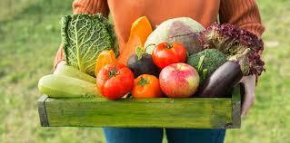 original légumes frais de saison