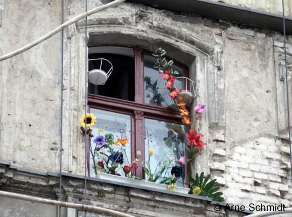 Flowers - Berlin Mitte, May 2013