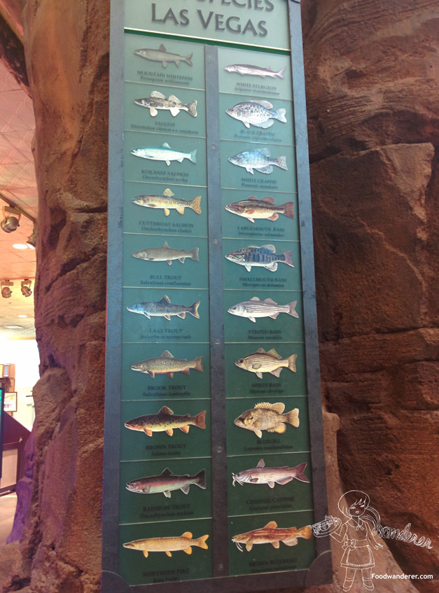 Fish species of Las Vegas