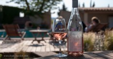 domaine rouge-bleu rose by the pool