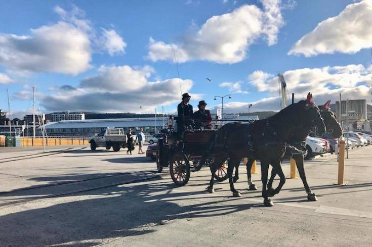 hobart waterfront with horse