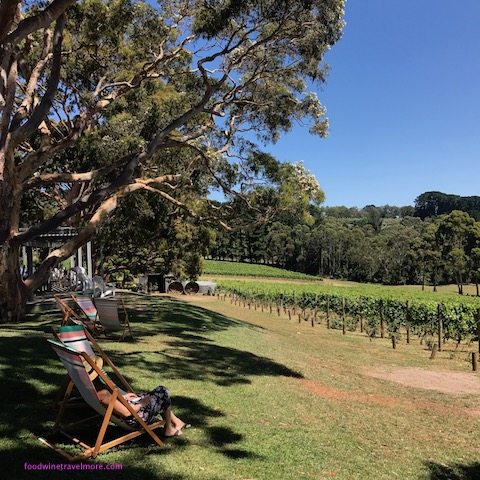 Polperro accommodation mornington peninsula vineyard