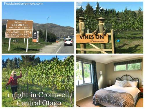 Accommodation in Cromwell for wine tasting central otago