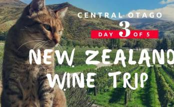 NZ Wine Trip Central Otago Day 3