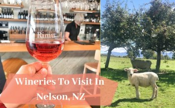 Wineries To Visit In Nelson, NZ