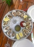 Plate of fresh oysters on ice | Raw bar on the patio | Jockey Hollow Morristown NJ | foodwithaview.com