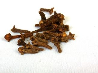 Cloves on a white background.