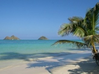 Hawaiian island beach scene with a palm tree overlooking a fine sandy beach and some volcanic islands in the background.