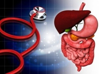 Image of a stethoscope and the intestines with liver.