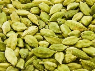 Cardamon seed close up