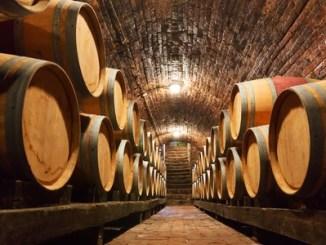 46720451 - rows of oak barrels in underground wine cellar
