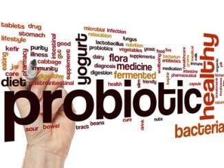 68092306 - probiotic word cloud