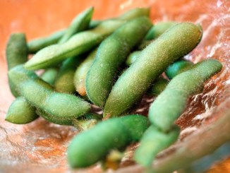 Edamame green pods on a red saucer.