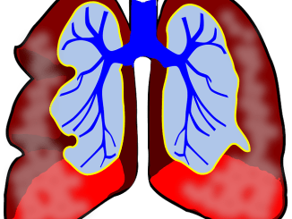 Image of lungs.