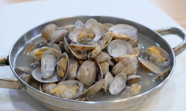 cyclina sinensis, clams in a bowl, asian cuisine