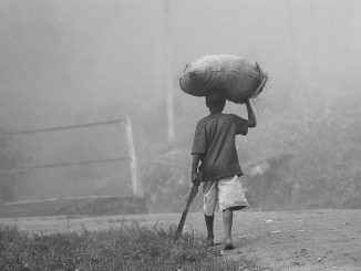 African farmer carrying harvest, ukazi