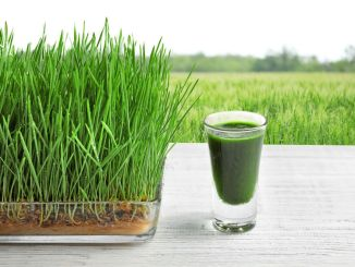 Glass of juice and wheatgrass field on background