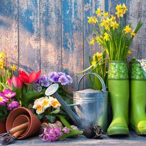 Best Gardening Gifts 2021