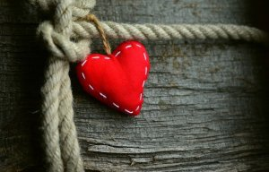 heart tied to a rope on a tree trunk