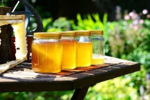 Honey in glass jars in a row on a table outside.