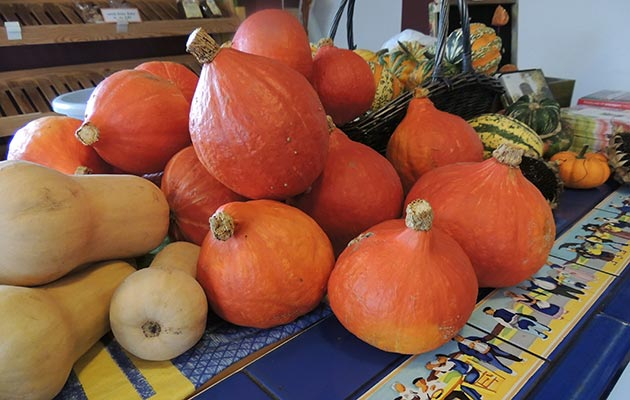 Pumpins - not just for Halloween