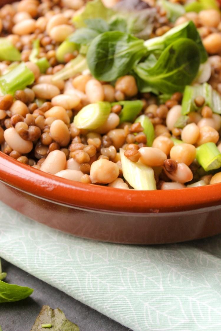Vegetarian Legume Salad