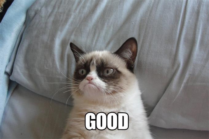 grumpy-cat-good