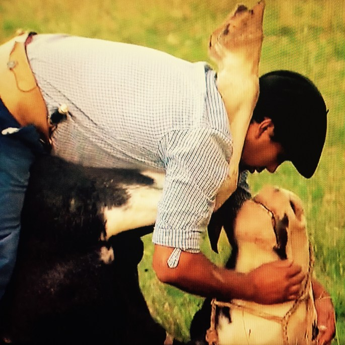 man and horse bachelorette.jpg