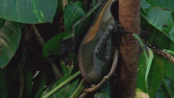 paulo's shoe expose lost