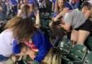 Well Damn! Ladies Start Brawling At A Baseball Game.