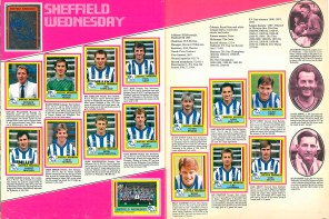 Sheffield Wednesday 1987