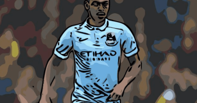 Fernandinho, Manchester City, Tactical Analysis, Statistics