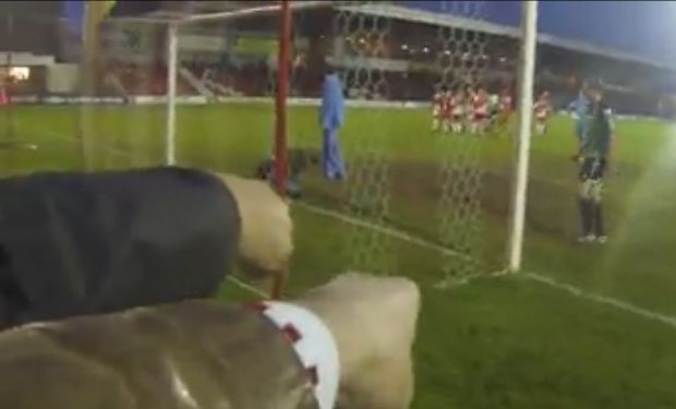 Angry fans as they watch a Wrexham goal disallowed as the ball goes through a hole in the net